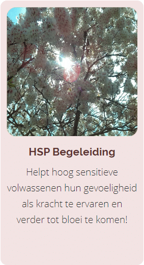 HSP Begeleiding, Coaching HSP
