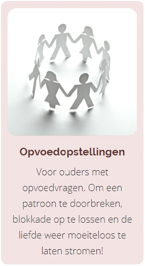 Opstelling, opvoedopstelling, individuele familieopstelling