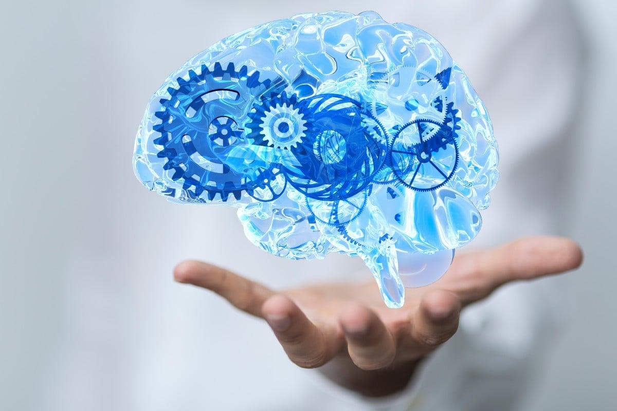 Hoogsensitieve brein, hoog sensitieve brein, hooggevoelige brein, werking hersenen HSP